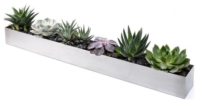 Concrete Windowsill Planter - Modern - Indoor Pots And Planters ...