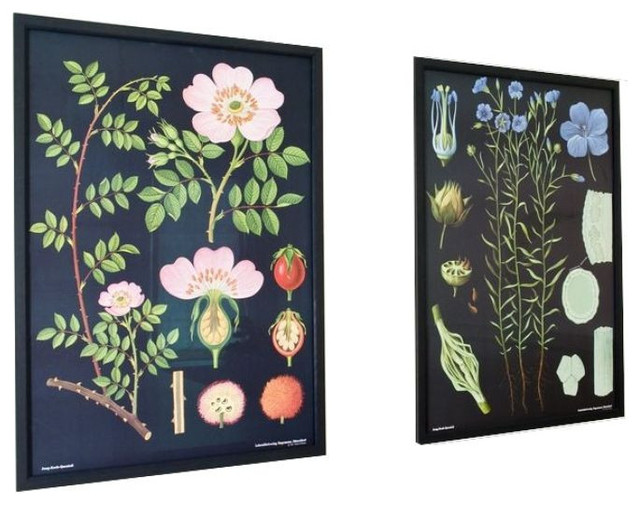 large framed botanical prints in rose and flax 2000 est retail 1200 on