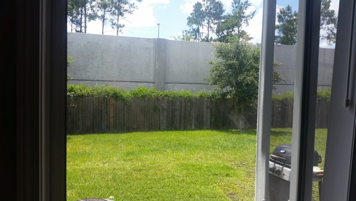 Sound Barrier Wall Built Behind My House. What Can I Do?