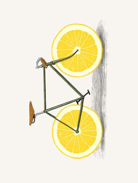 "Lemon Zest Bike by Artist Florent Bodart 9/"" x 12/"" SOLID Wood Sign"