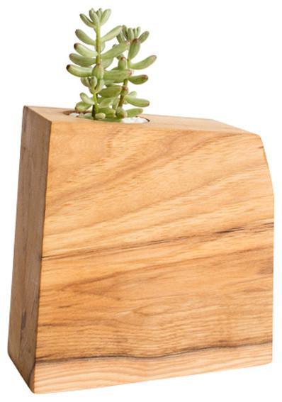 Minimal Wood Succulent Planter Air Plant Holder