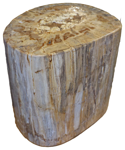 Brilliant 19 Amazing Petrified Wood Stool Full Polish White Yellow Spectacular Cut Gmtry Best Dining Table And Chair Ideas Images Gmtryco
