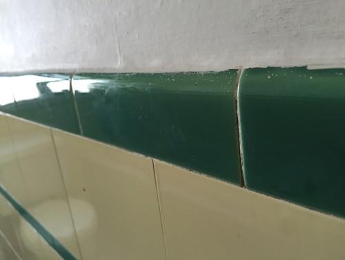 1930s bathroom tile dilemma