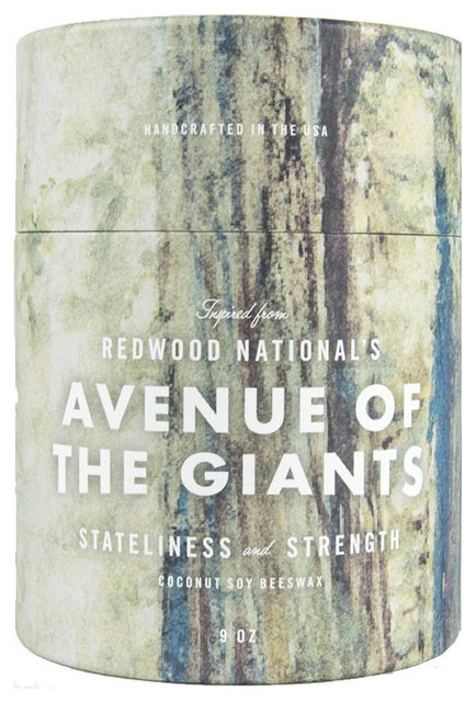 This Land is Your Land Redwood National's Avenue of The Giants Candle