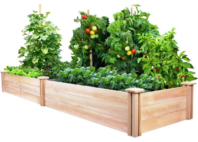 Cedar Wood 2-Ft X 8-Ft Outdoor Raised Garden Bed Planter Frame - Made on 2 x 8 retaining wall, 2 x 6 raised garden bed, 2 ft raised garden bed, 4 x 8 raised garden bed, 2 x 4 raised garden bed,
