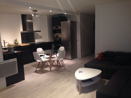 dilemme deco saloncuisine ouverte - Idee Amenagement Appartement 30m2