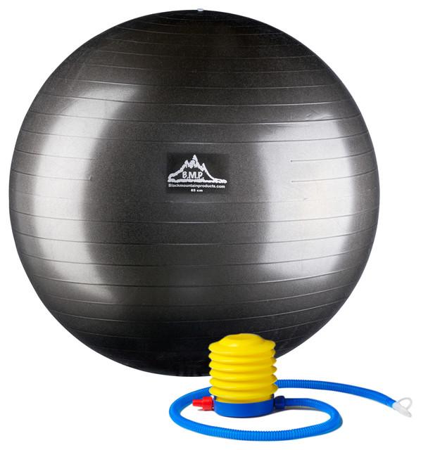 Professional Grade Stability Ball Contemporary Home