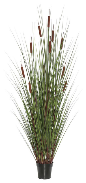 """48"""" Grass With 8 Cattails Potted"""