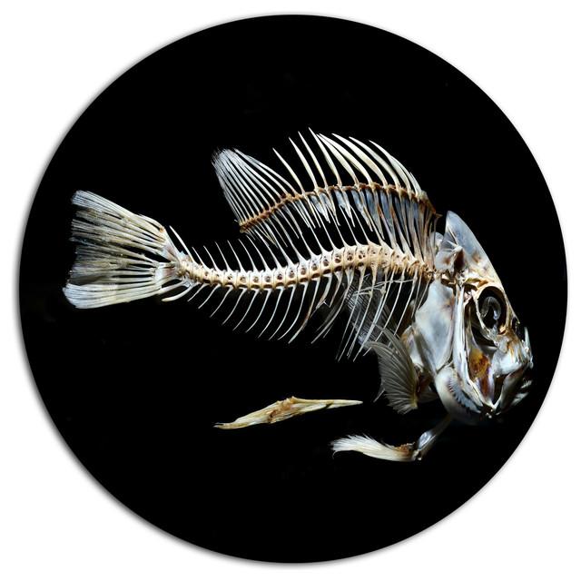 Fish Skeleton Bone On Black Animal Disc Metal Artwork 11