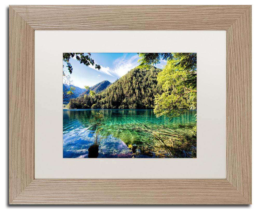 Philippe Hugonnard Tiger Lake Art Contemporary Photographs By Trademark Global