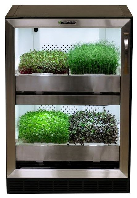 Indoor Herb Garden Urban Cultivator Residential, Clear Glass. Modern  Specialty Kitchen Appliances