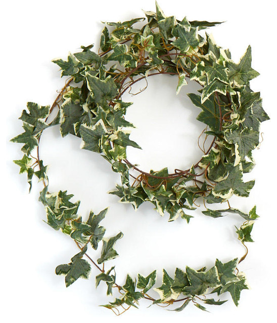 Varigated Ivy Garlands, Set Of 2.