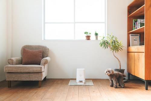 【Houzz】新生活の最初のステップ、新居の物件探しと内見のポイント 2番目の画像