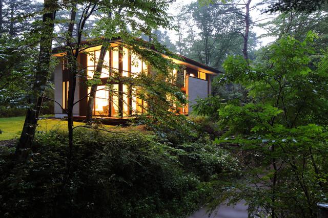 他の地域, の中サイズのモダンスタイルのスキップフロア住宅の写真 (木材サイディング、黒い外壁、寄棟屋根、戸建、金属屋根)
