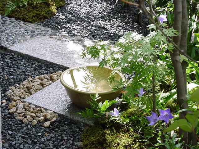 Japanese Tea Garden, Japanese Tea Garden Water Basin
