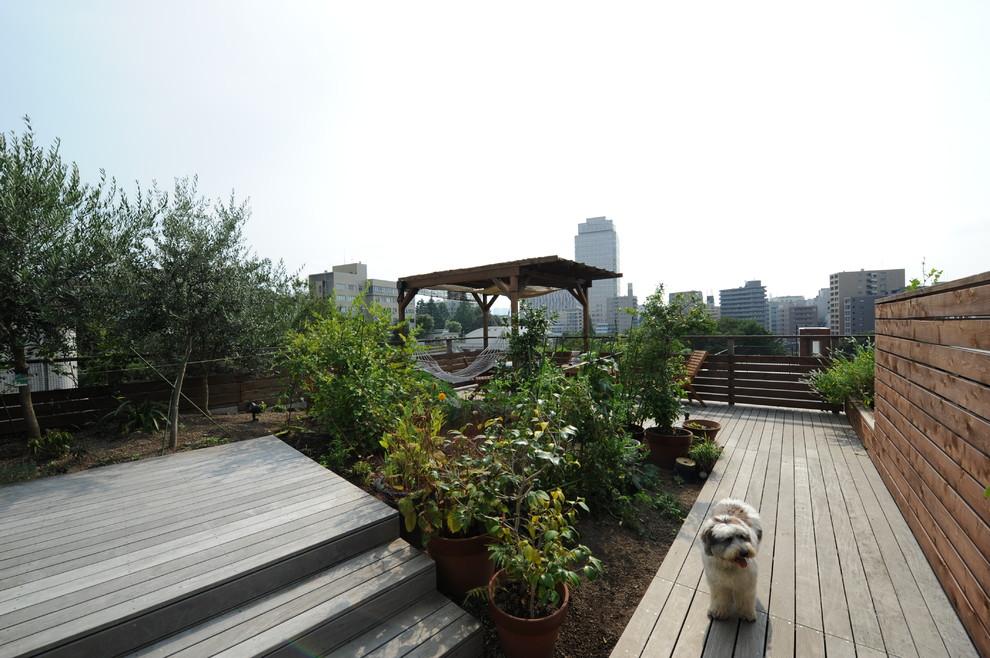 庭園 屋上