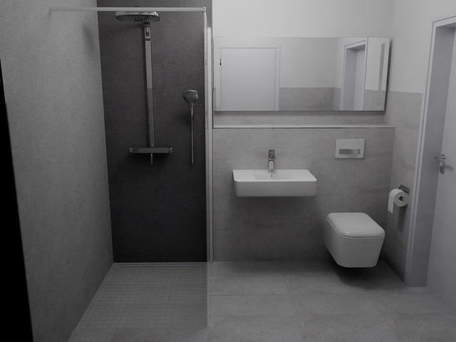 Small bathroom with shower design - Fugenlose Dusche