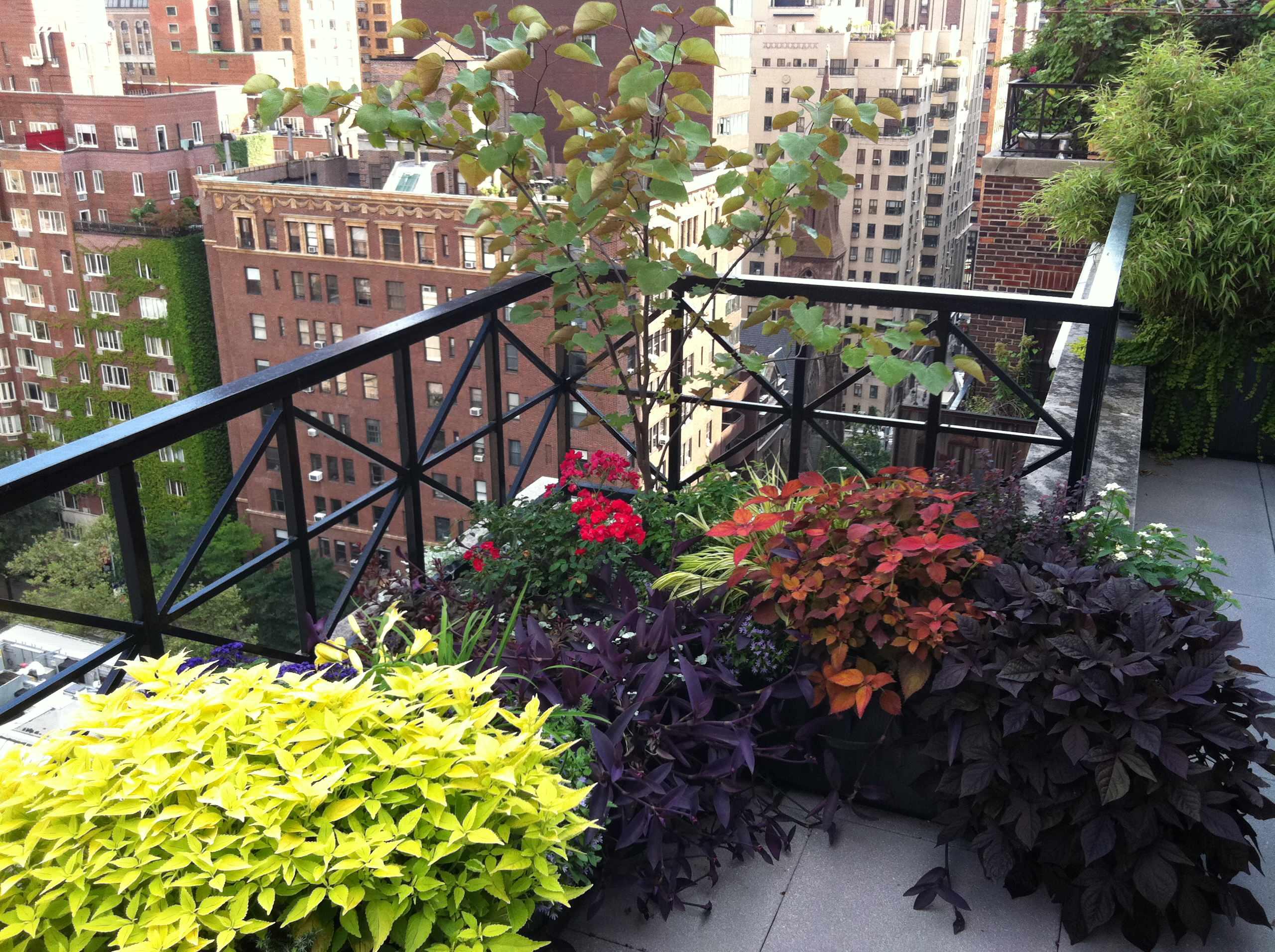 Rooftop in Manhattan