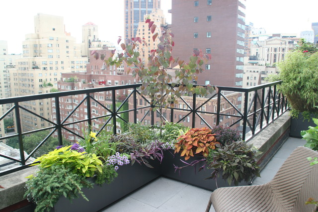 Rooftop in Mnahattan contemporary-landscape