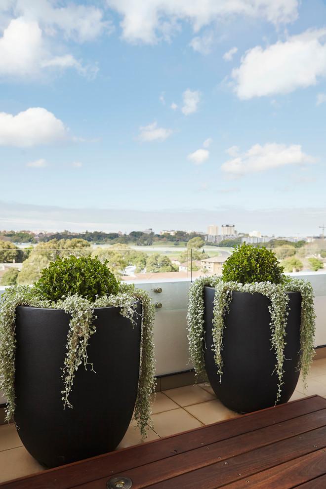 Trendy balcony photo in Sydney