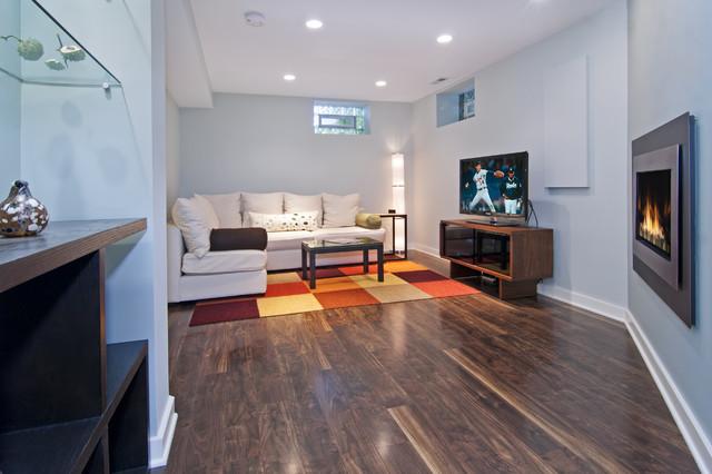 A Modern Lower Level modern-basement