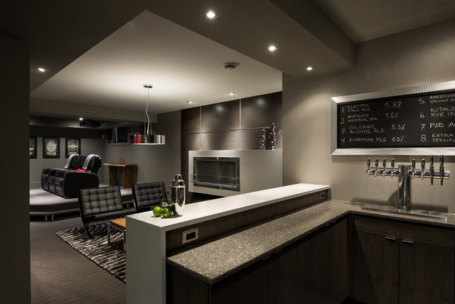 Basement Brewery / Bar / Home Theater Contemporary Basement