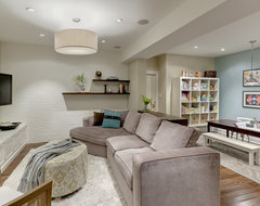 Basement Family Room traditional-basement