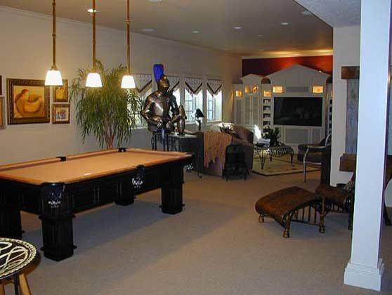 Basement Life traditional-basement