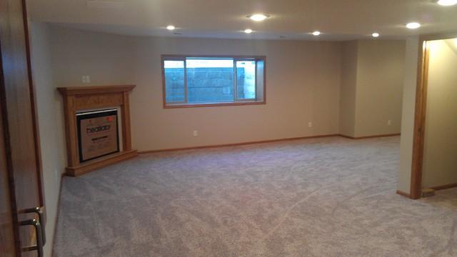 Basement Project traditional-basement