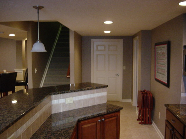 Basement Remodels traditional-basement