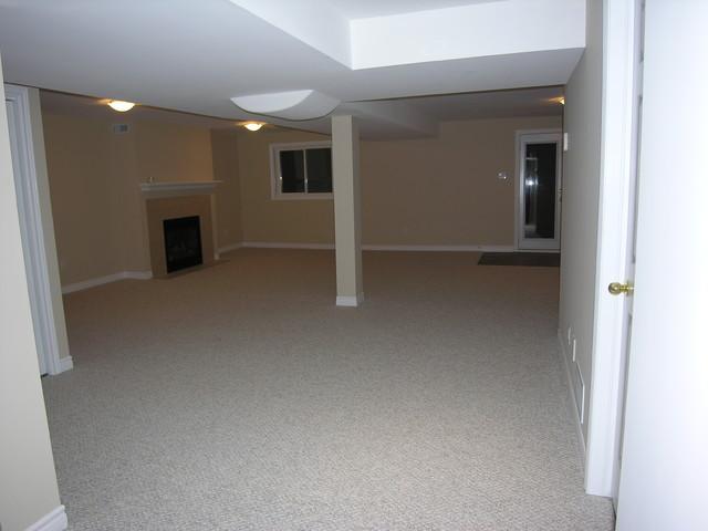 Basement Richmond Hill traditional-basement