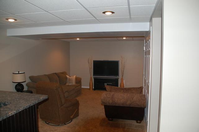 Basement - traditional basement idea in Cincinnati