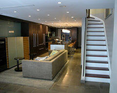Brownstone Townhouse Renovation contemporary basement