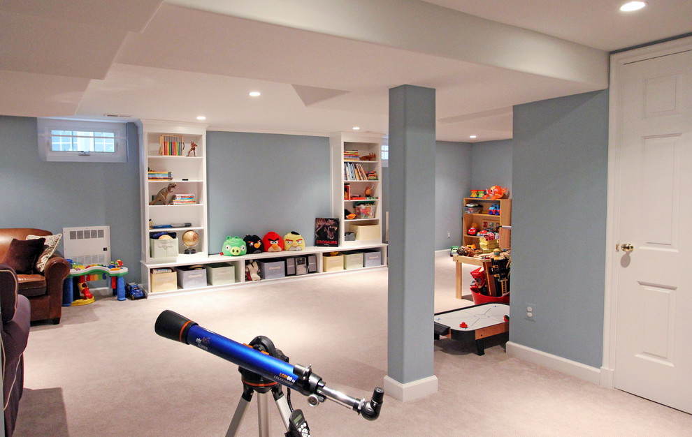 Inspiration for a timeless basement remodel in DC Metro