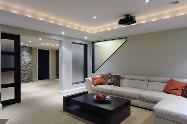 Contemporary Basement