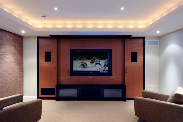 Entertainment Unit - contemporary - basement - ottawa - by Southam