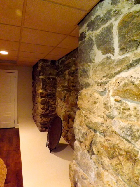 exposed rock wall in basement traditional basement charlotte