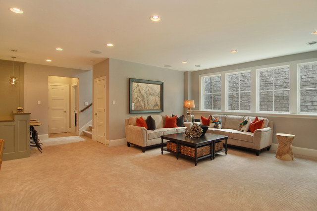 Great Neighborhood Homes transitional-basement
