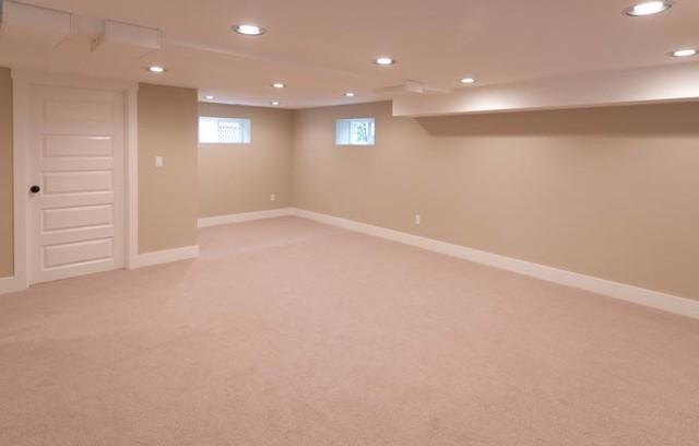 Hawthorne House Remodel traditional-basement