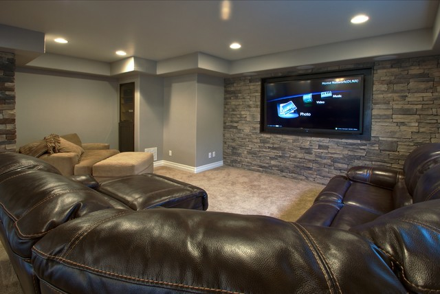 Highlands Ranch Basement Finish Traditional Basement