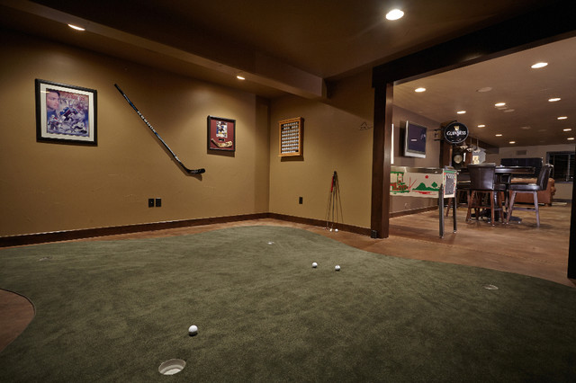Shallow Pond Traditional Basement Denver By