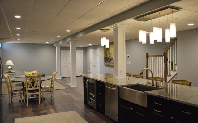 Large Family Basement Transitional Other