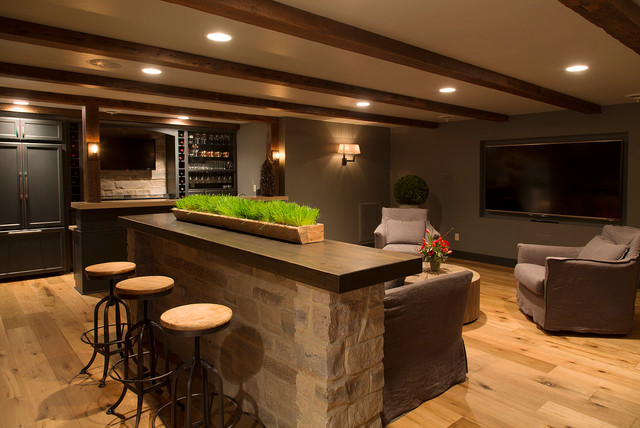 Lower Level Revival contemporary-basement