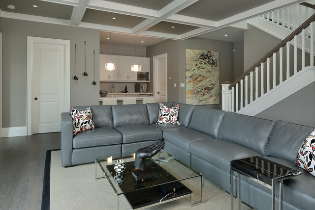 Contemporary Basement By Arnal Photography