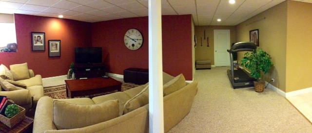 Sandy's house contemporary-basement