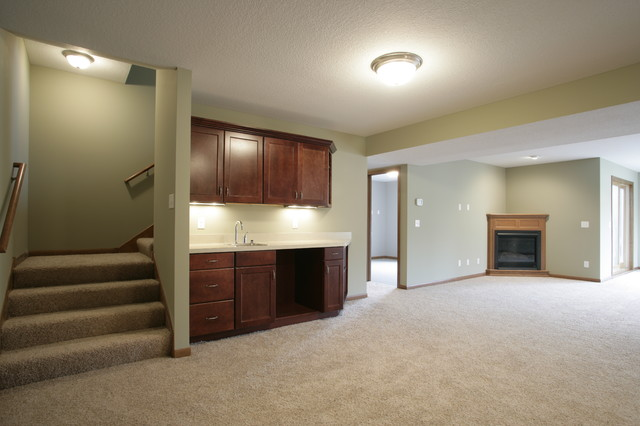 Shorewood Home traditional-basement