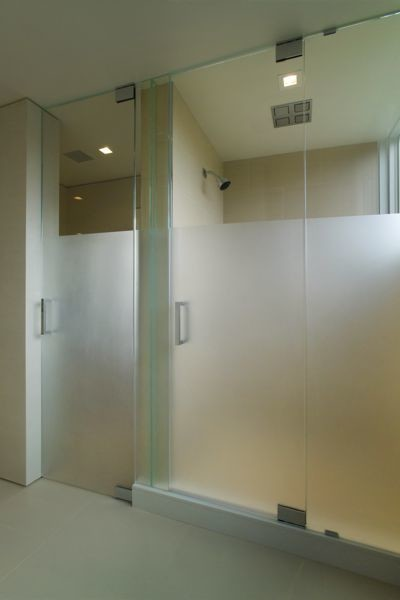 Shower Doors- Steam Frosted traditional-basement