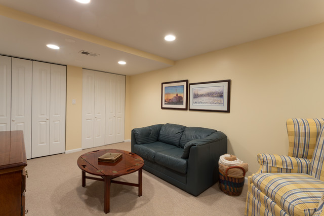 small basement remodeling chicago living room