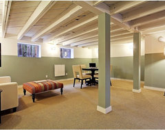 Staged Green Canopy Homes - Teresa contemporary-basement