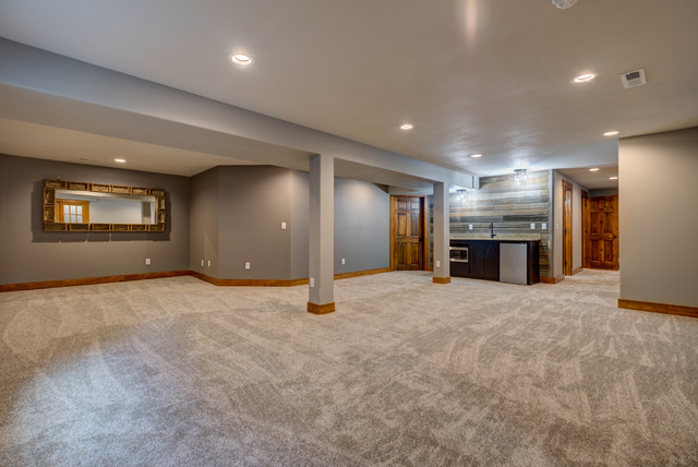 Transitional basement photo in Other